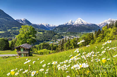 Alpine Beauty Poster by JR Photography