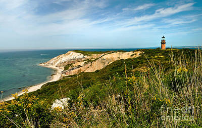 Aquinnah Gay Head Lighthouse Marthas Vineyard Massachusetts Poster by Michelle Wiarda
