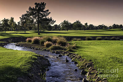Arizona Golf Landscape Poster by Sheldon Kralstein