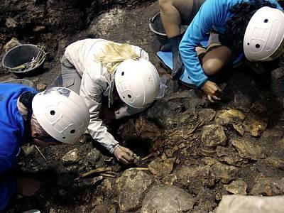 Atapuerca Fossil Excavation Poster by Javier Trueba/msf