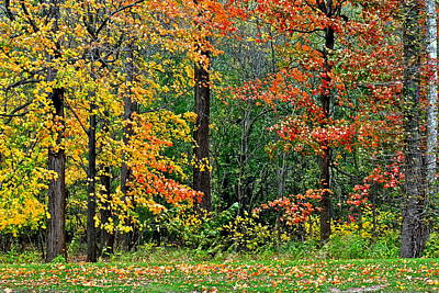 Autumn Landscape Poster by Frozen in Time Fine Art Photography