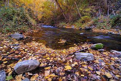 Autumn Rivers Poster by Guido Montanes Castillo