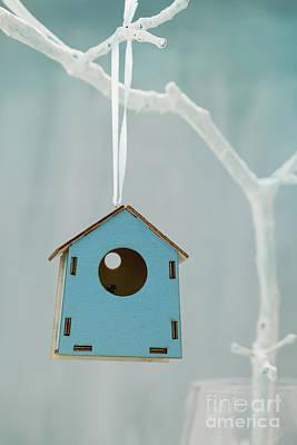 Bird House Poster by Mythja  Photography