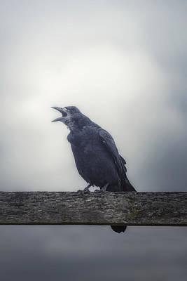 Crow Poster by Joana Kruse