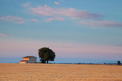 Dawn Over Farmhouse And Wheat Field Poster by Brian Jannsen
