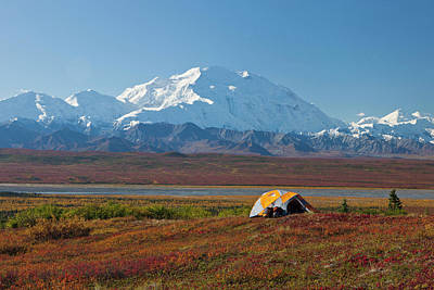 Denali National Park, Alaska, Mt Poster by Hugh Rose