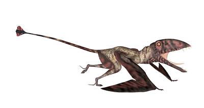 Dimorphodon Pterosaur Poster by Friedrich Saurer