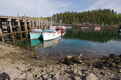 Dock With Fishing Boats At Low Tide Poster by Andrew J. Martinez