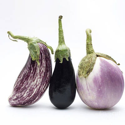 Eggplants Poster by Bernard Jaubert