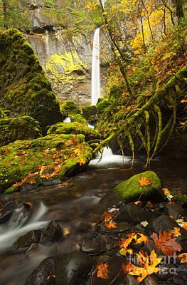 Elowah Autumn Poster by Mike  Dawson