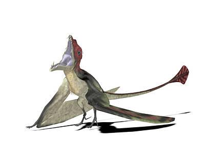 Eudimorphodon Pterosaur Poster by Friedrich Saurer