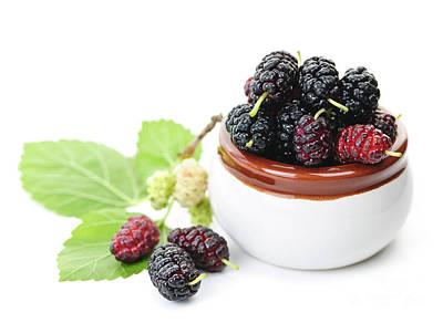 Fresh Mulberries Poster by Elena Elisseeva