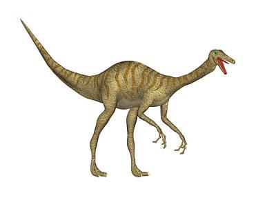 Gallimimus Dinosaur Poster by Friedrich Saurer