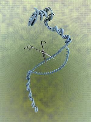 Gene Editing Poster by Gunilla Elam