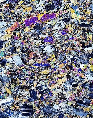 Granodiorite Rock, Light Micrograph Poster by Dirk Wiersma