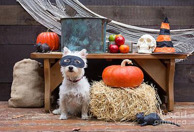 Happy Halloween Poster by Edward Fielding