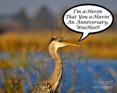 Happy Heron Anniversary Card Poster by Al Powell Photography USA