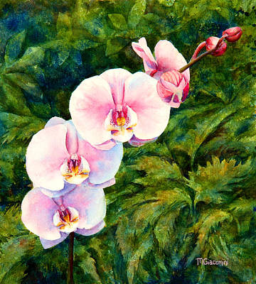 Hawaiian Orchid Poster by Mary Giacomini