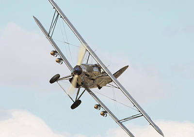 Hawker Hind - Comin' At Ya Poster by Pat Speirs