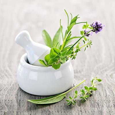 Healing Herbs Poster by Elena Elisseeva