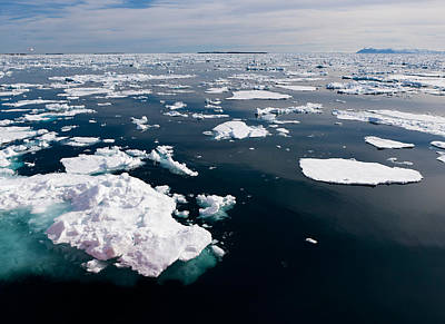 Icebergs, Hinlopen Strait, Spitsbergen Poster by Panoramic Images
