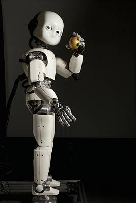 iCub robot Poster by Science Photo Library