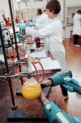 Identifying The Chemicals In Orange Peel Poster by Rob Judges/oxford University Images
