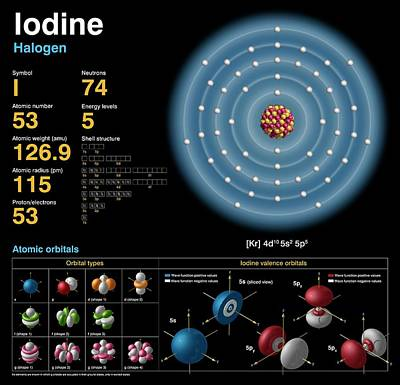 Iodine Poster by Carlos Clarivan