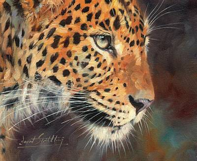 Leopard Poster by David Stribbling
