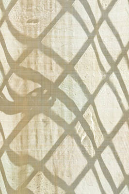 Linen Curtain Poster by Tom Gowanlock