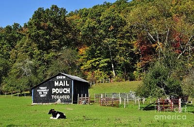 Mail Pouch Barn Poster by Thomas R Fletcher