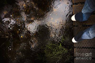Man Standing On A Rainforest Boardwalk Poster by Jorgo Photography - Wall Art Gallery