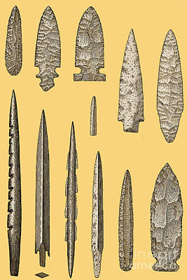 Mesolithic And Neolithic Flint Tools Poster by Science Source