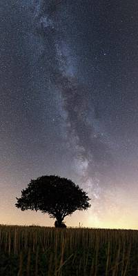 Milky Way Over Tree Poster by Laurent Laveder