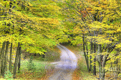 Miller Hill Road In Fall Poster by Twenty Two North Photography
