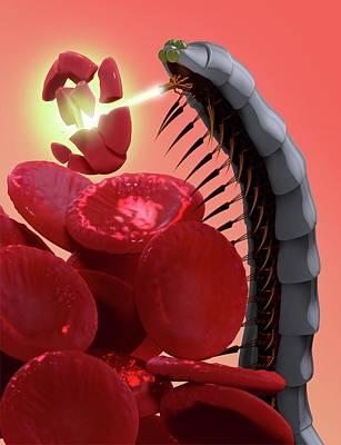 Nanobot Destroying Blood Clot Poster by Tim Vernon
