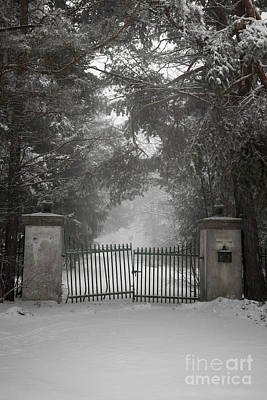 Old Driveway Gate In Winter Poster by Elena Elisseeva