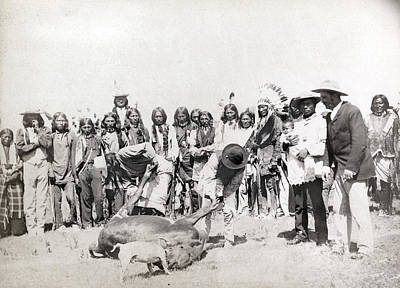 Pine Ridge Cattle, 1891 Poster by Granger