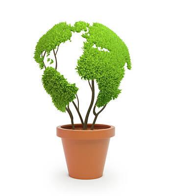 Pot Plant In Shape Of Earth Poster by Andrzej Wojcicki