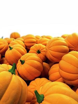 Pumpkins Poster by Sebastian Kaulitzki