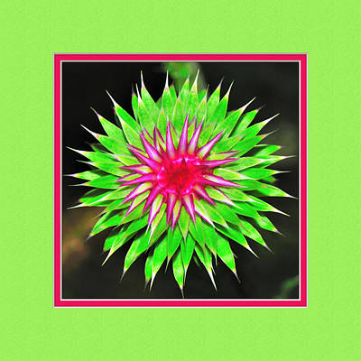 Purple Thistle Flower Poster by Charles Feagans