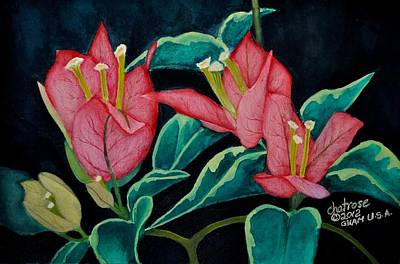 Red Bougainvillae Poster by Charito ChatRose Mahilum