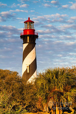 St. Augustine Lighthouse St. Augustine Florida Poster by Dawna  Moore Photography