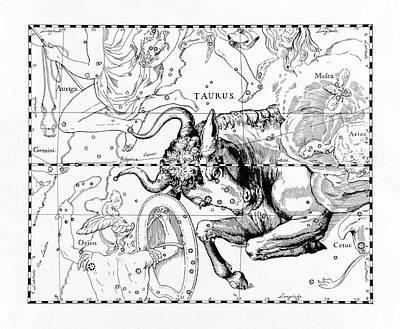 Taurus Poster by Detlev Van Ravenswaay