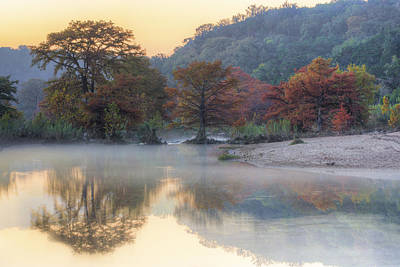 Texas Hill Country Images - Cypress Of Pedernales Falls State Pa Poster by Rob Greebon