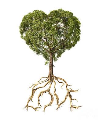 Tree With Foliage In The Shape Poster by Leonello Calvetti