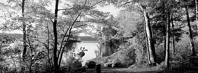 Trees At The Lakeside, Great Sacandaga Poster by Panoramic Images