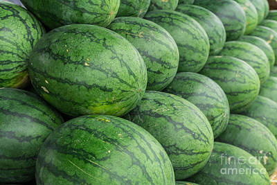 Watermelon  Poster by Tosporn Preede
