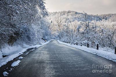 Winter Road Poster by Elena Elisseeva