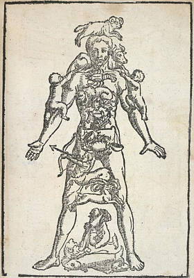 Zodiac Man Poster by British Library